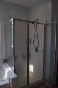 Master Bathroom Shower Renovation